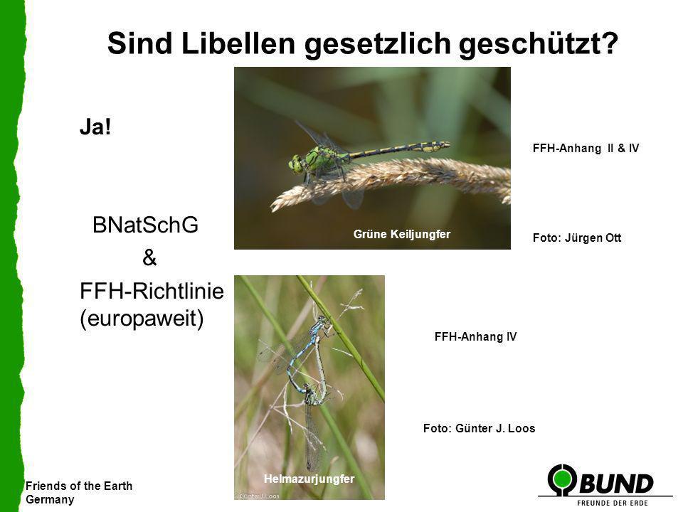 Friends of the Earth Germany Sind Libellen gesetzlich geschützt? Ja! BNatSchG & FFH-Richtlinie (europaweit) Blaugrüne Mosaikjungfer Foto: Jürgen Ott F