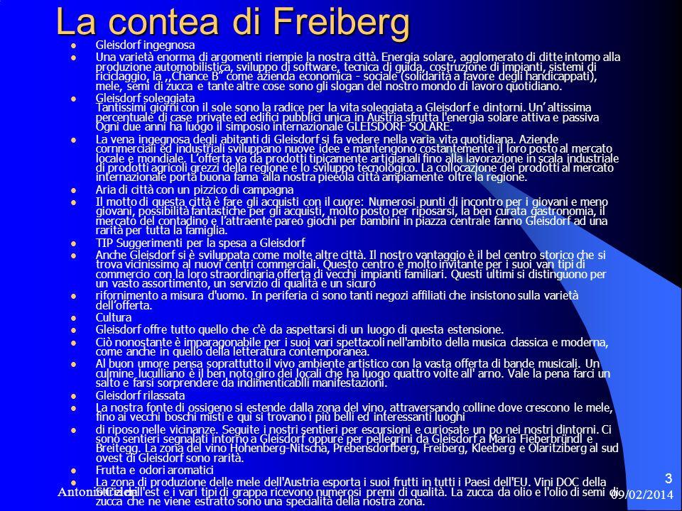 09/02/2014 Antonio Celeri 3 La contea di Freiberg La contea di Freiberg Gleisdorf ingegnosa Una varietà enorma di argomenti riempie la nostra città.