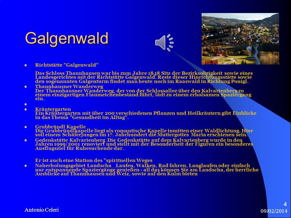 09/02/2014 Antonio Celeri 4 Galgenwald Richtstätte Galgenwald Das Schloss Thannhausen war bis zum Jahre 1848 Sitz der Bezirksobrigkeit sowie eines Landesgerichtes mit der Richtstätte Galgenwald.