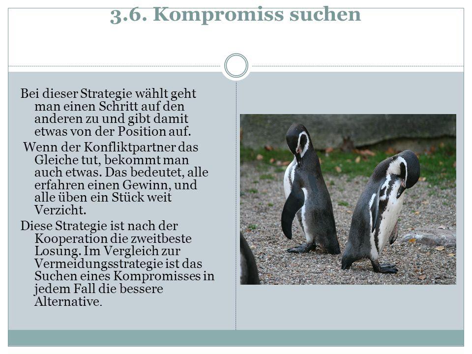 3.6. Kompromiss suchen Bei dieser Strategie wählt geht man einen Schritt auf den anderen zu und gibt damit etwas von der Position auf. Wenn der Konfli
