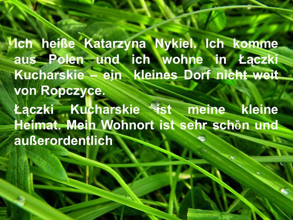 Ich heiße Katarzyna Nykiel. Ich komme aus Polen und ich wohne in Łączki Kucharskie – ein kleines Dorf nicht weit von Ropczyce. Łączki Kucharskie ist m
