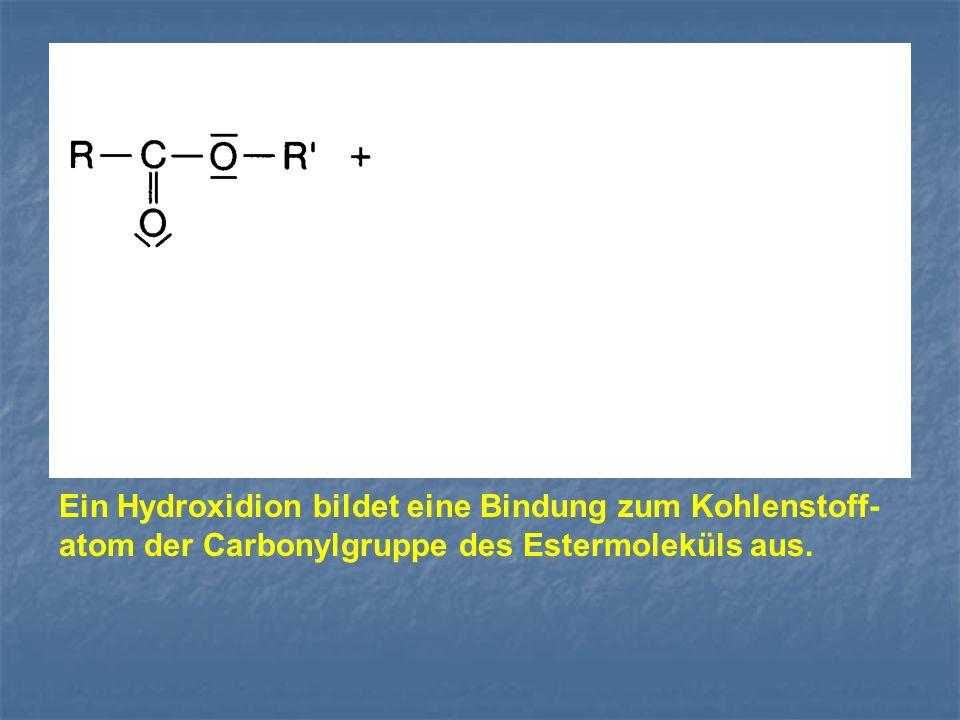 Ein Hydroxidion bildet eine Bindung zum Kohlenstoff- atom der Carbonylgruppe des Estermoleküls aus.