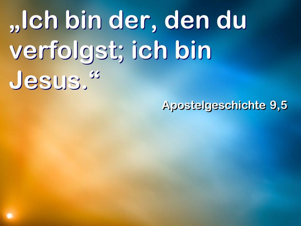 Ich bin der, den du verfolgst; ich bin Jesus. Apostelgeschichte 9,5