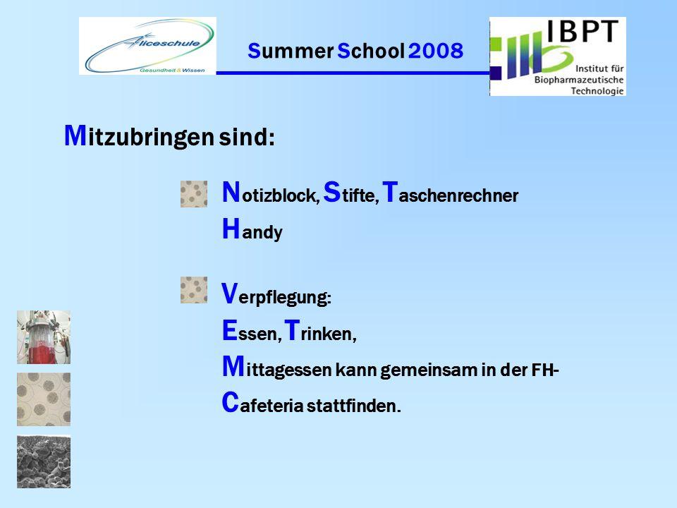 Summer School 2008 A blauf für F reitag, der 8.