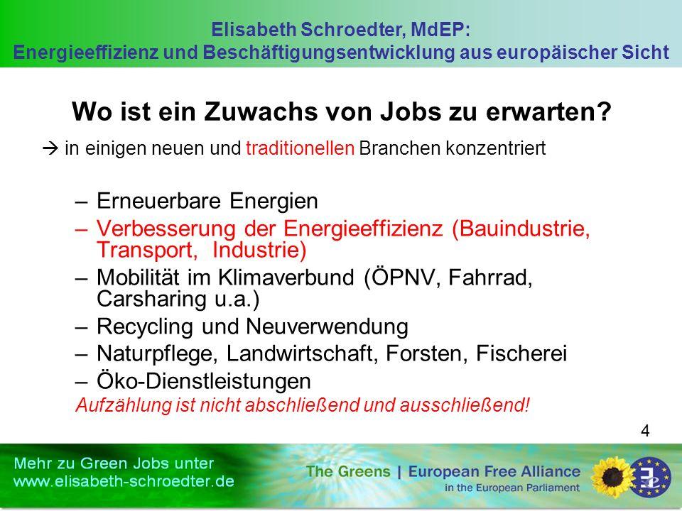 Elisabeth Schroedter, MdEP: Energieeffizienz und Beschäftigungsentwicklung aus europäischer Sicht 4 Wo ist ein Zuwachs von Jobs zu erwarten.