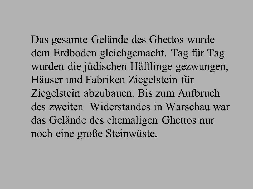 Das gesamte Gelände des Ghettos wurde dem Erdboden gleichgemacht. Tag für Tag wurden die jüdischen Häftlinge gezwungen, Häuser und Fabriken Ziegelstei