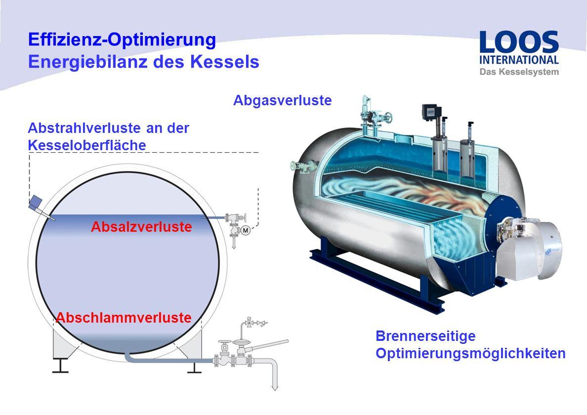 04/10 MT Effizienz-Optimierung LOOS-Kesselisoliertechnik Werksfoto UL-S-IE Isolation aller Revisions- und Reinigungsöffnungen am Kesselkörper an Abgas