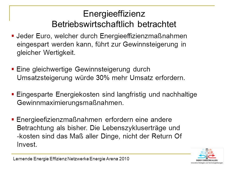 Energieeffizienz Betriebswirtschaftlich betrachtet Jeder Euro, welcher durch Energieeffizienzmaßnahmen eingespart werden kann, führt zur Gewinnsteiger