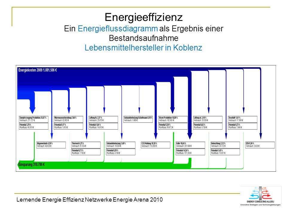 Energieeffizienz Ein Energieflussdiagramm als Ergebnis einer Bestandsaufnahme Lebensmittelhersteller in Koblenz Lernende Energie Effizienz Netzwerke E