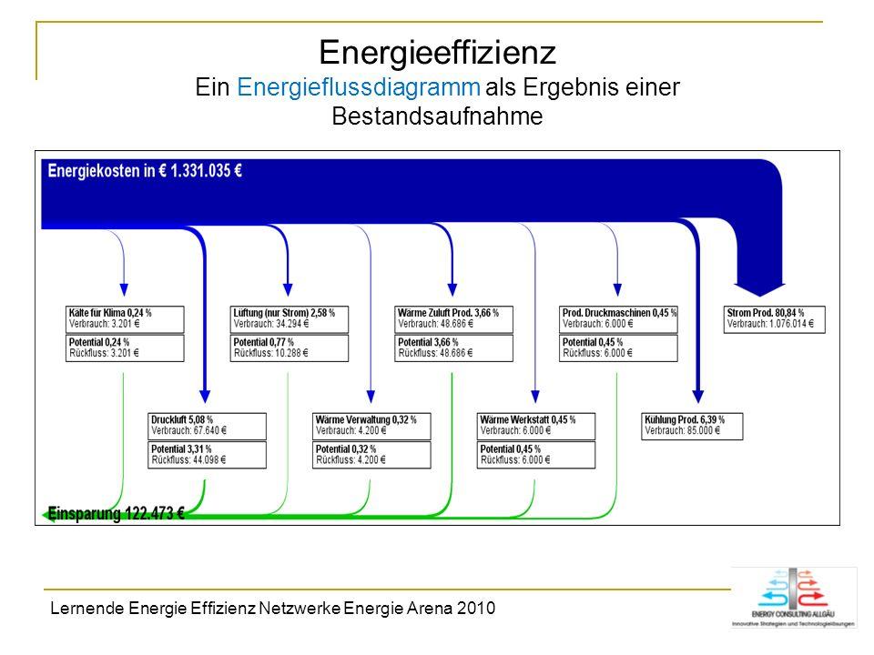 Energieeffizienz Ein Energieflussdiagramm als Ergebnis einer Bestandsaufnahme Lernende Energie Effizienz Netzwerke Energie Arena 2010