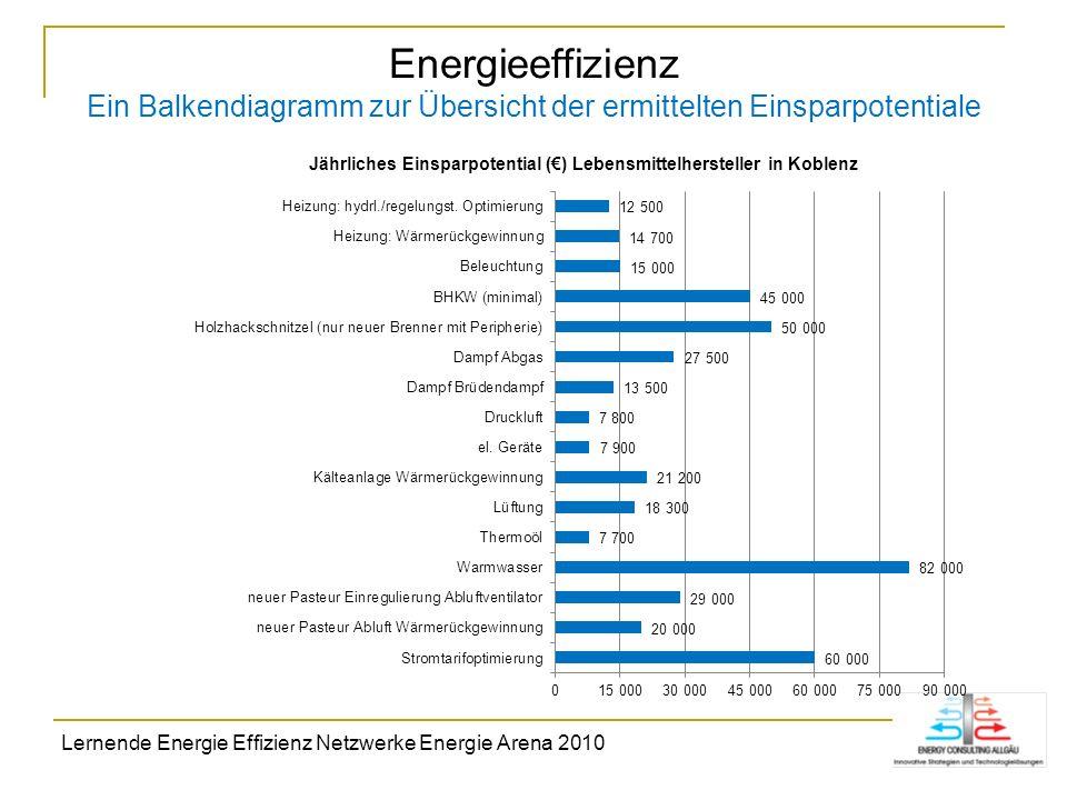 Energieeffizienz Ein Balkendiagramm zur Übersicht der ermittelten Einsparpotentiale Lernende Energie Effizienz Netzwerke Energie Arena 2010