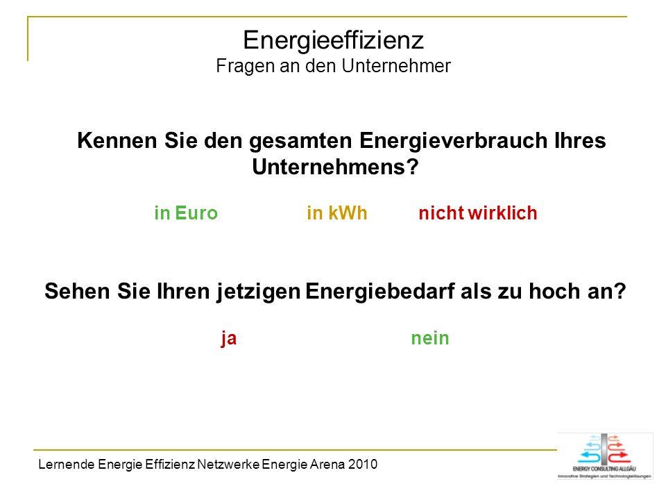 Energieeffizienz Fragen an den Unternehmer Kennen Sie den gesamten Energieverbrauch Ihres Unternehmens? in Euro in kWh nicht wirklich Sehen Sie Ihren