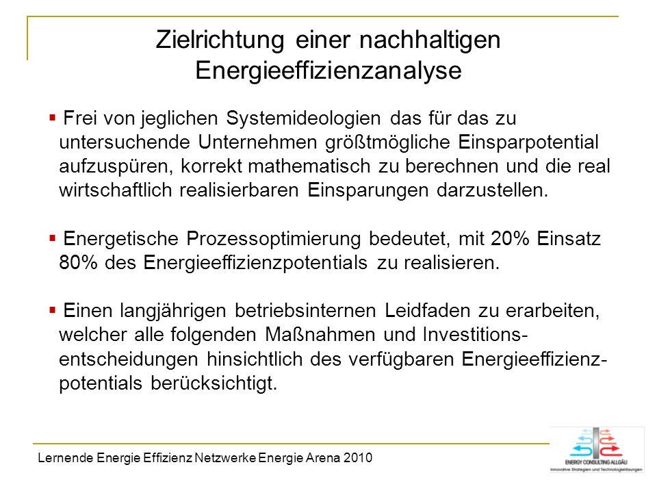 Zielrichtung einer nachhaltigen Energieeffizienzanalyse Frei von jeglichen Systemideologien das für das zu untersuchende Unternehmen größtmögliche Ein
