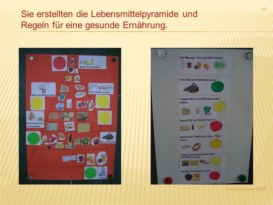 Nicole Mathieu 2009 14 Sie erstellten die Lebensmittelpyramide und Regeln für eine gesunde Ernährung.