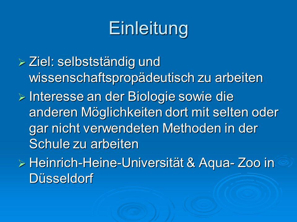 Einleitung Ziel: selbstständig und wissenschaftspropädeutisch zu arbeiten Ziel: selbstständig und wissenschaftspropädeutisch zu arbeiten Interesse an der Biologie sowie die anderen Möglichkeiten dort mit selten oder gar nicht verwendeten Methoden in der Schule zu arbeiten Interesse an der Biologie sowie die anderen Möglichkeiten dort mit selten oder gar nicht verwendeten Methoden in der Schule zu arbeiten Heinrich-Heine-Universität & Aqua- Zoo in Düsseldorf Heinrich-Heine-Universität & Aqua- Zoo in Düsseldorf