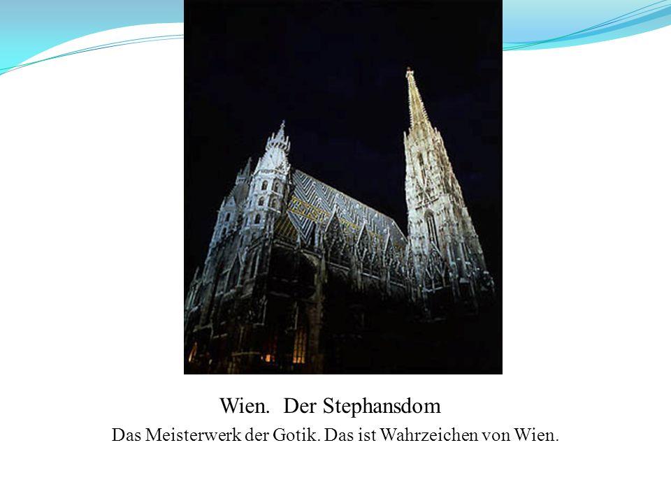 Das Meisterwerk der Gotik. Das ist Wahrzeichen von Wien. Wien. Der Stephansdom
