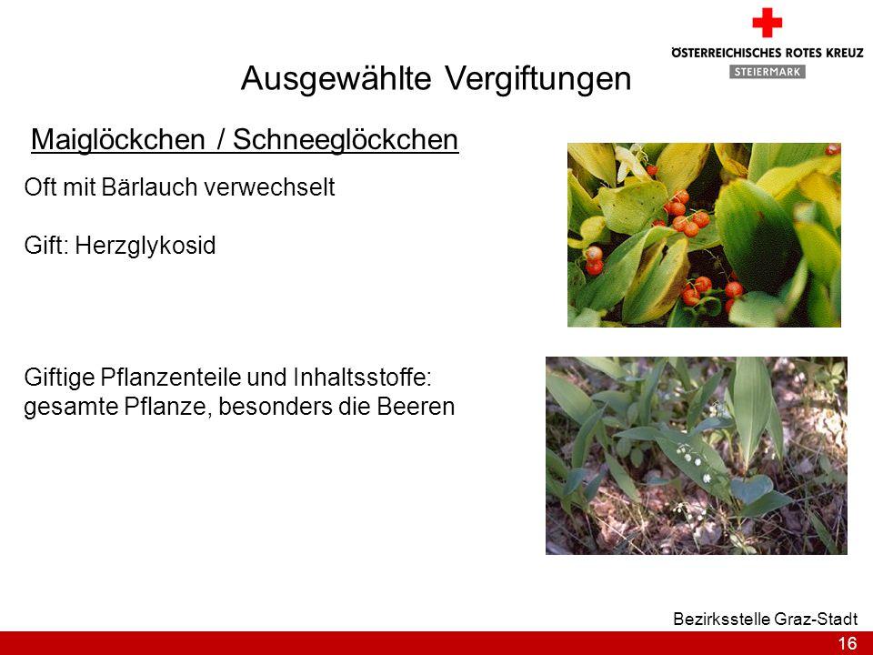16 Bezirksstelle Graz-Stadt Ausgewählte Vergiftungen Maiglöckchen / Schneeglöckchen Oft mit Bärlauch verwechselt Gift: Herzglykosid Giftige Pflanzente