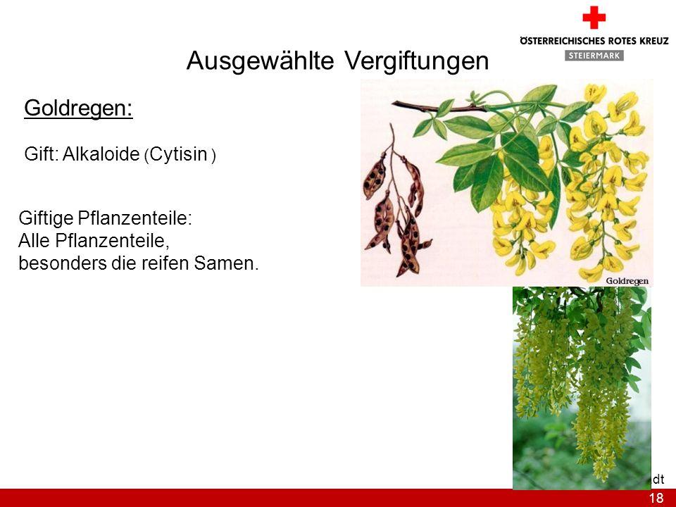 18 Bezirksstelle Graz-Stadt Ausgewählte Vergiftungen Goldregen: Gift: Alkaloide ( Cytisin ) Giftige Pflanzenteile: Alle Pflanzenteile, besonders die r