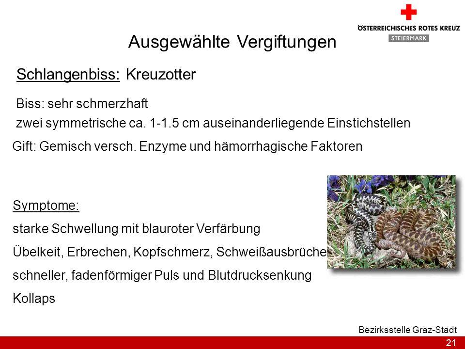 21 Bezirksstelle Graz-Stadt Ausgewählte Vergiftungen Schlangenbiss: Kreuzotter Biss: sehr schmerzhaft zwei symmetrische ca. 1-1.5 cm auseinanderliegen