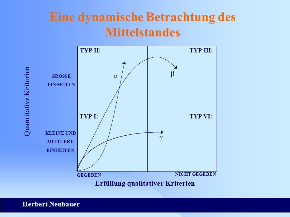 Herbert Neubauer Eine dynamische Betrachtung des Mittelstandes TYP II:TYP III: TYP I:TYP VI: Quantitative Kriterien GROSSE EINHEITEN KLEINE UND MITTLERE EINHEITEN GEGEBEN NICHT GEGEBEN Erfüllung qualitativer Kriterien α β γ