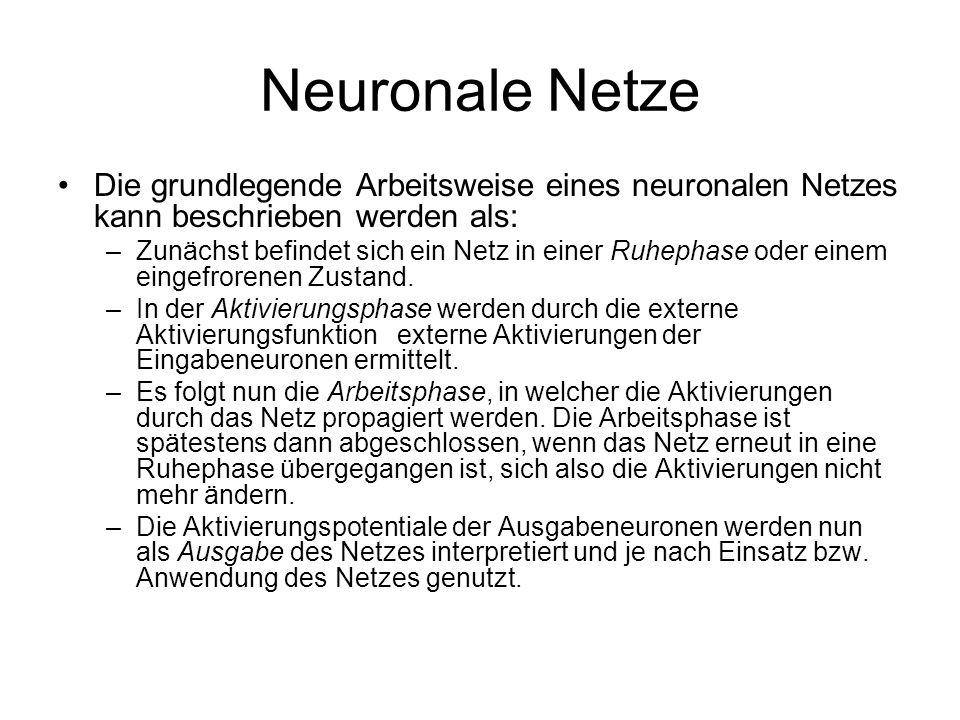 Neuronale Netze Die grundlegende Arbeitsweise eines neuronalen Netzes kann beschrieben werden als: –Zunächst befindet sich ein Netz in einer Ruhephase oder einem eingefrorenen Zustand.