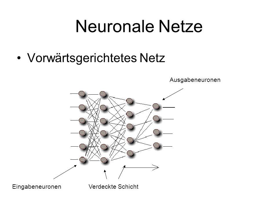 Neuronale Netze Vorwärtsgerichtetes Netz EingabeneuronenVerdeckte Schicht Ausgabeneuronen