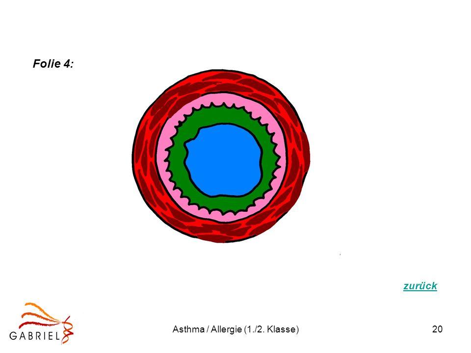 Asthma / Allergie (1./2. Klasse)20 Folie 4: zurück