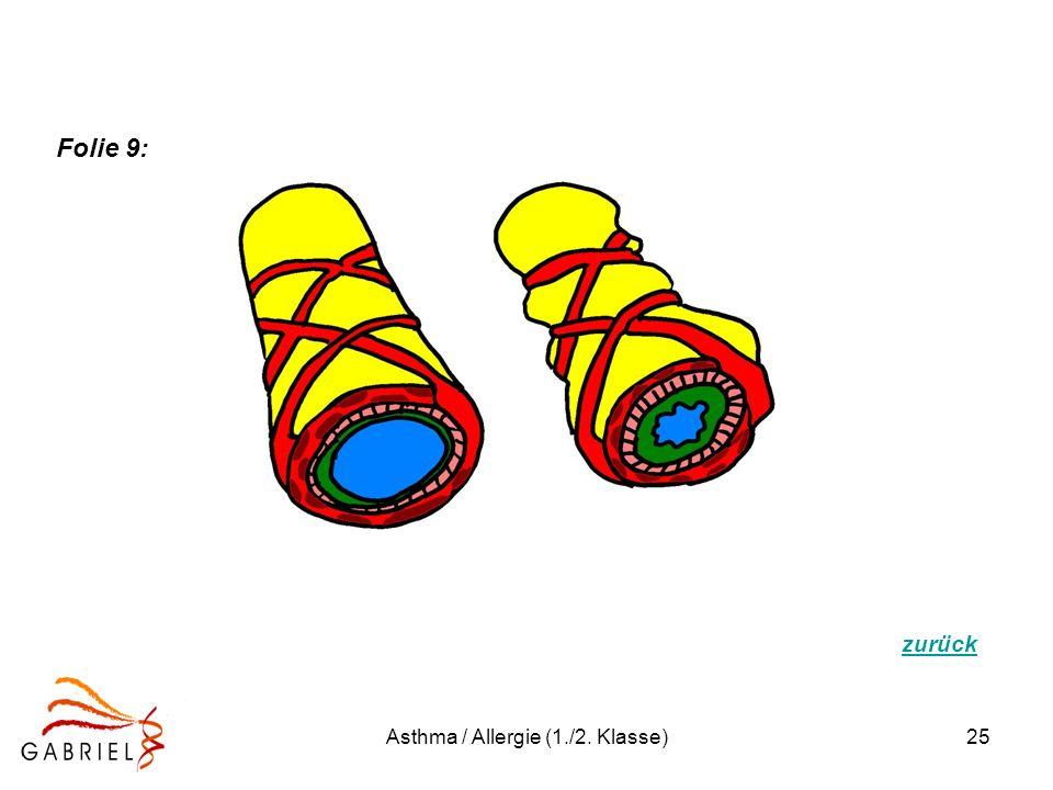 Asthma / Allergie (1./2. Klasse)25 zurück Folie 9: