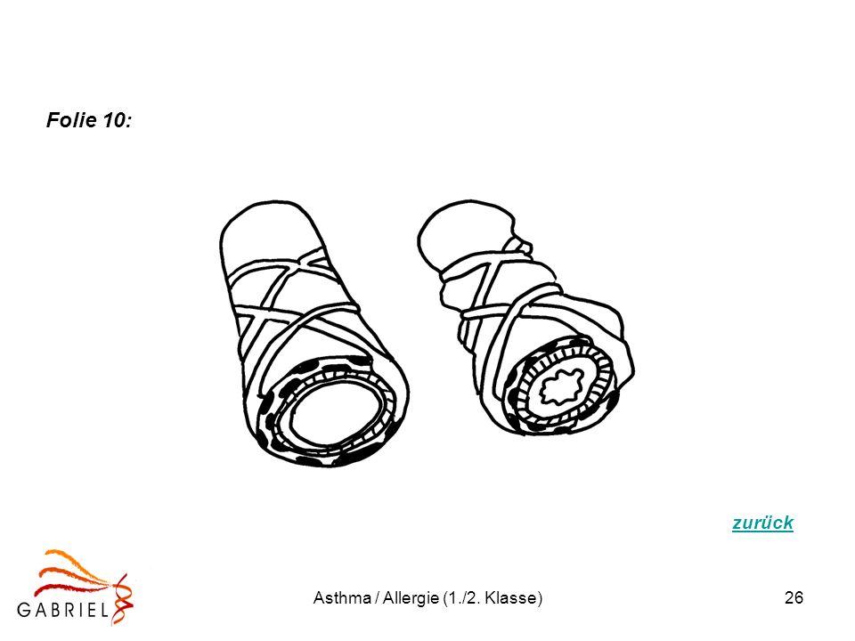 Asthma / Allergie (1./2. Klasse)26 zurück Folie 10: