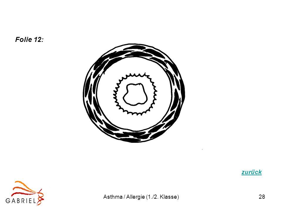 Asthma / Allergie (1./2. Klasse)28 zurück Folie 12: