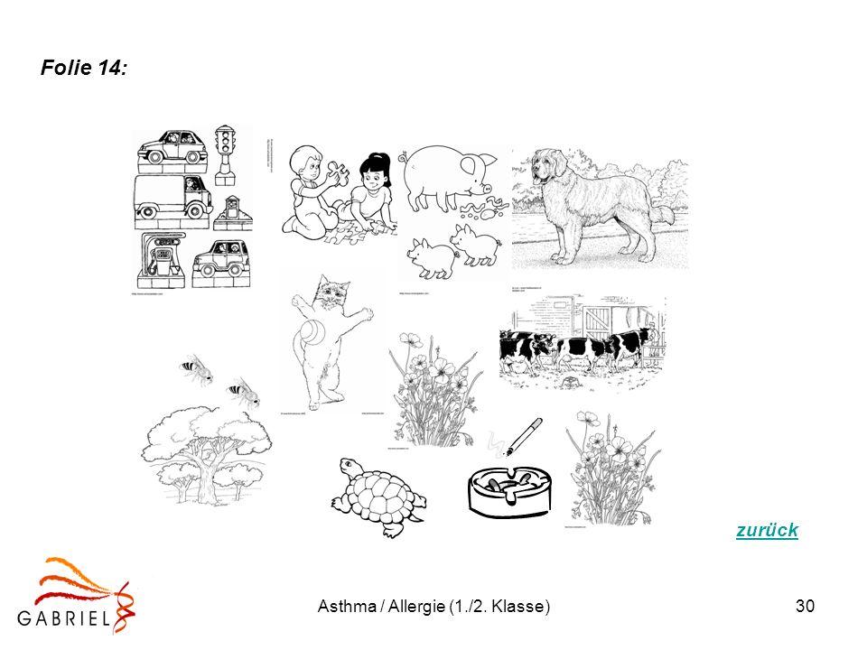 Asthma / Allergie (1./2. Klasse)30 zurück Folie 14: