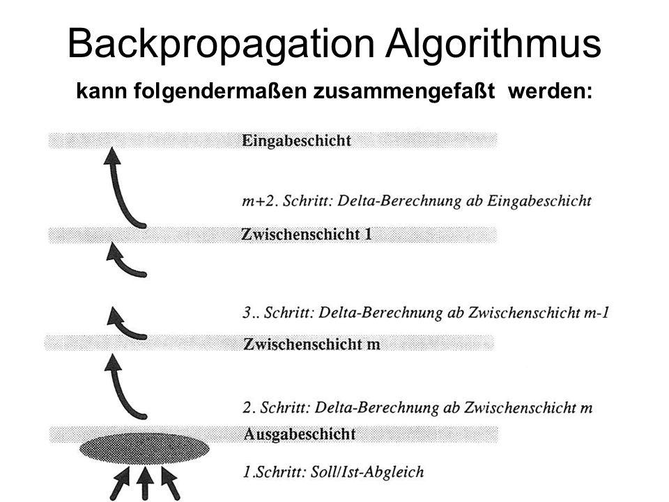 Backpropagation Algorithmus kann folgendermaßen zusammengefaßt werden: