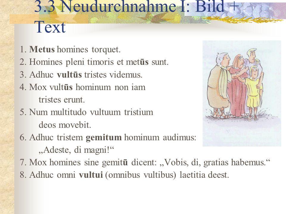 3.3 Neudurchnahme I: Bild + Text 1.Metus homines torquet.