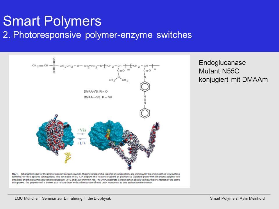 Smart Polymers 2. Photoresponsive polymer-enzyme switches LMU München, Seminar zur Einführung in die BiophysikSmart Polymers, Aylin Meinhold Endogluca