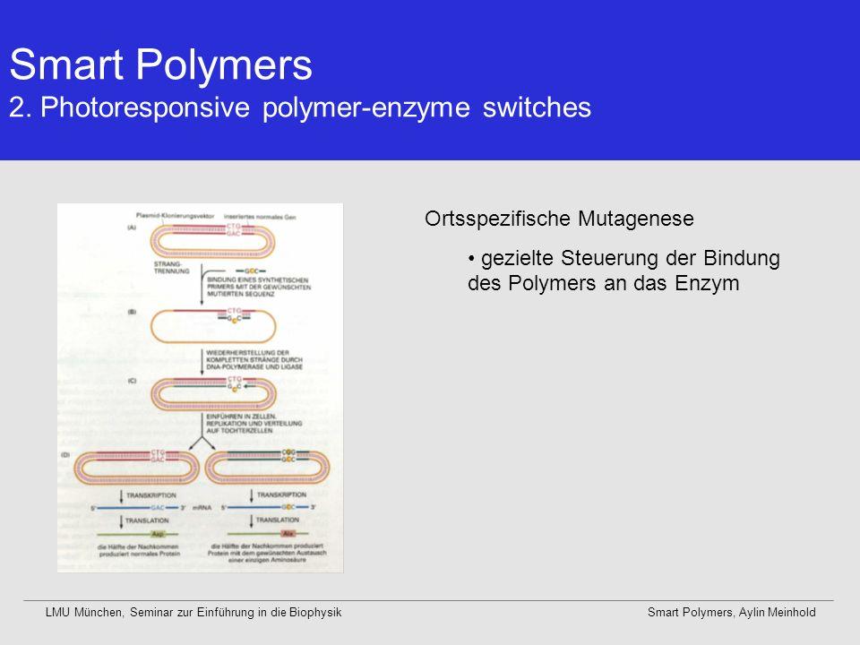 Smart Polymers 2. Photoresponsive polymer-enzyme switches LMU München, Seminar zur Einführung in die BiophysikSmart Polymers, Aylin Meinhold Ortsspezi