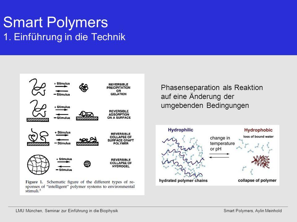 LMU München, Seminar zur Einführung in die BiophysikSmart Polymers, Aylin Meinhold Warum ist diese Methode nützlich.