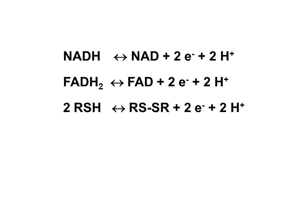 NADH NAD + 2 e - + 2 H + FADH 2 FAD + 2 e - + 2 H + 2 RSH RS-SR + 2 e - + 2 H +