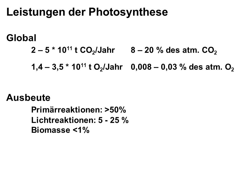 Leistungen der Photosynthese Global 2 – 5 * 10 11 t CO 2 /Jahr8 – 20 % des atm.