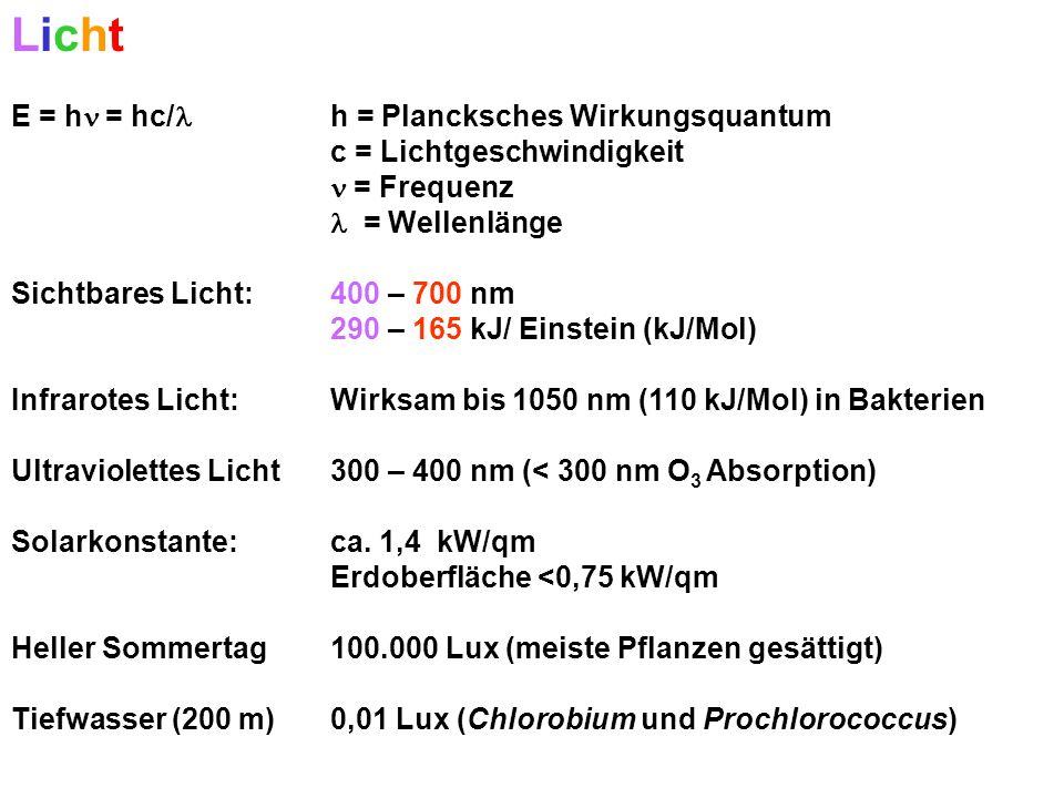 Licht E = h = hc/ h = Plancksches Wirkungsquantum c = Lichtgeschwindigkeit = Frequenz = Wellenlänge Sichtbares Licht: 400 – 700 nm 290 – 165 kJ/ Einstein (kJ/Mol) Infrarotes Licht: Wirksam bis 1050 nm (110 kJ/Mol) in Bakterien Ultraviolettes Licht 300 – 400 nm (< 300 nm O 3 Absorption) Solarkonstante: ca.