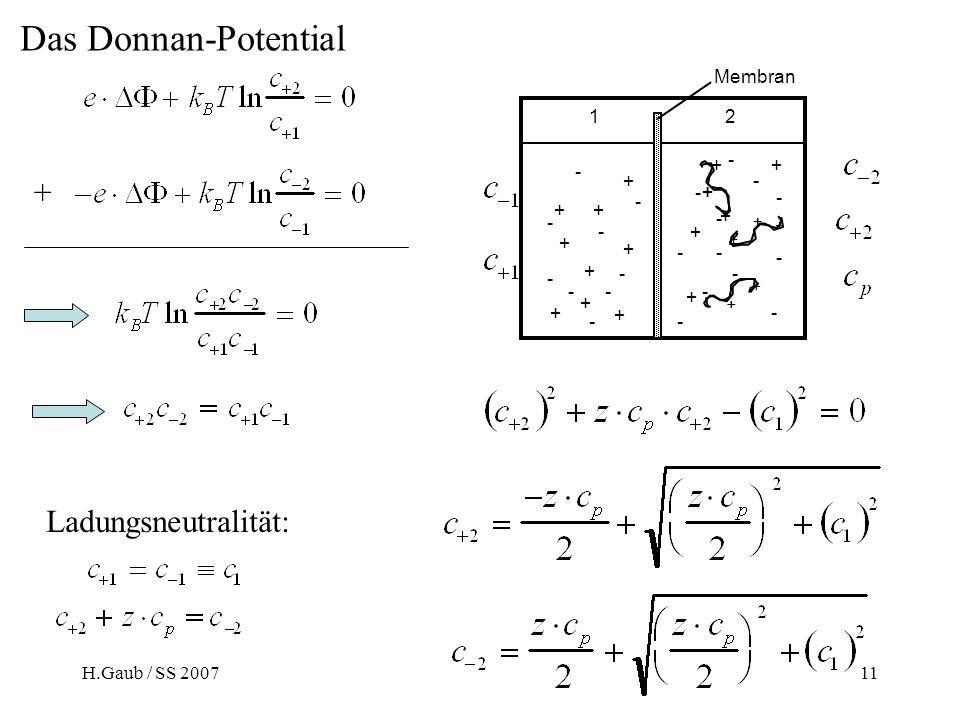H.Gaub / SS 2007BPZ§4.211 Ladungsneutralität: + Das Donnan-Potential Membran + ++ + + + + + + - - - - - -- - - ++ + + - - - - - - - - - + + + - - - 12 ++ + ++ + +