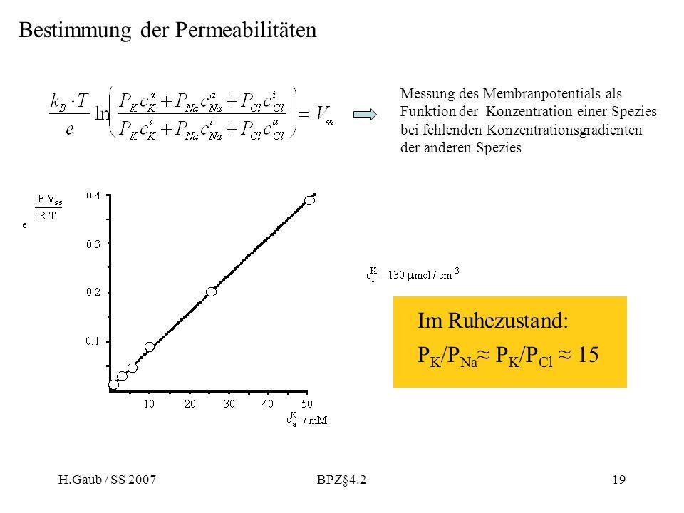 H.Gaub / SS 2007BPZ§4.219 Bestimmung der Permeabilitäten Messung des Membranpotentials als Funktion der Konzentration einer Spezies bei fehlenden Konzentrationsgradienten der anderen Spezies Im Ruhezustand: P K /P Na P K /P Cl 15