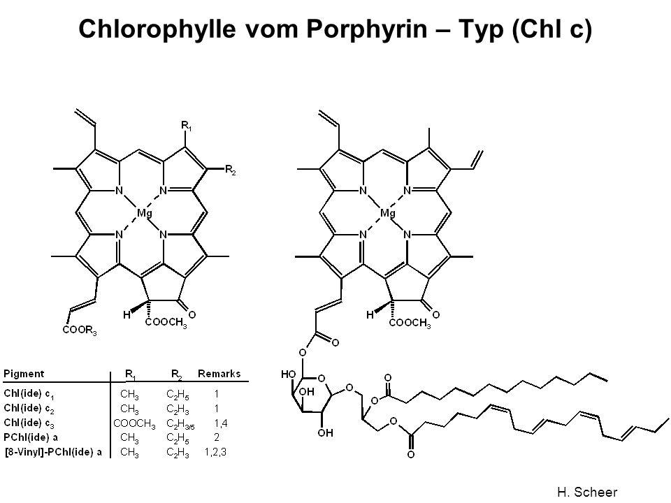 H. Scheer Chlorophylle vom Porphyrin – Typ (Chl c)