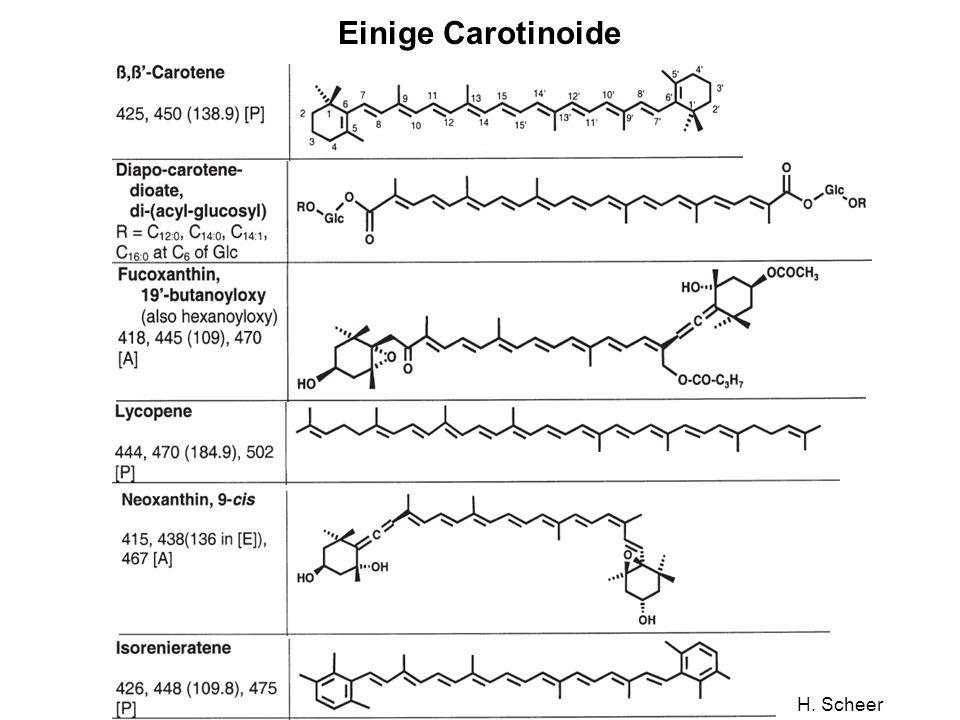 H. Scheer Einige Carotinoide