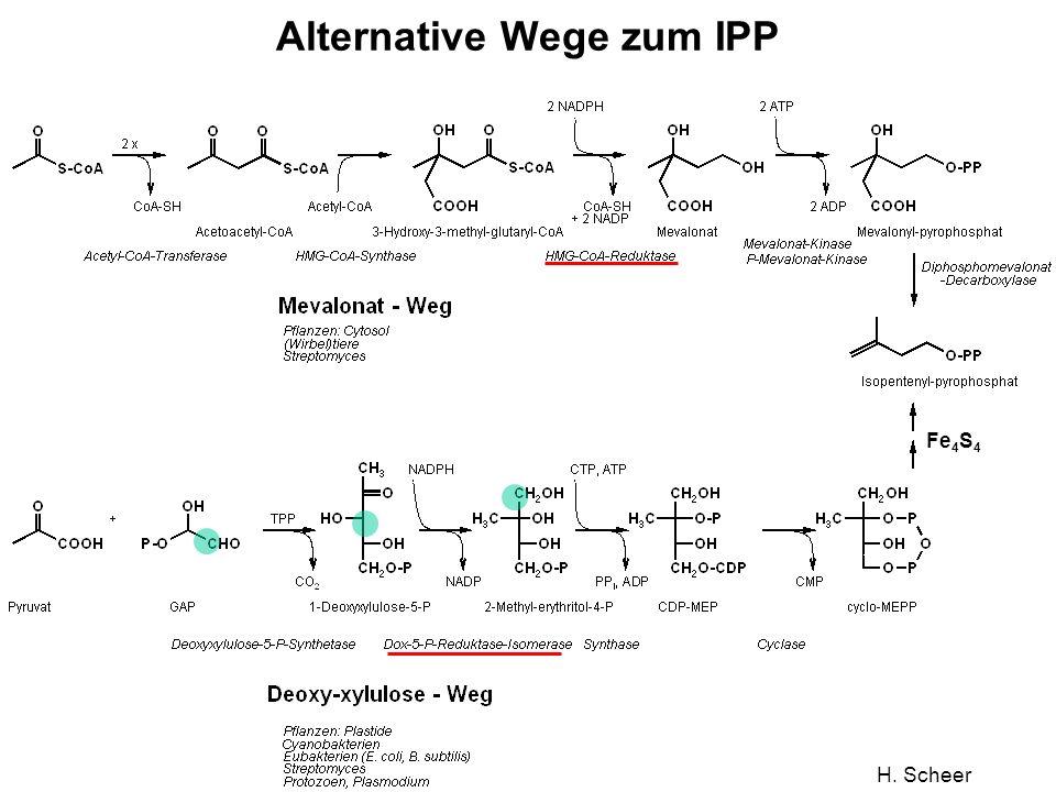 H. Scheer Alternative Wege zum IPP Fe 4 S 4