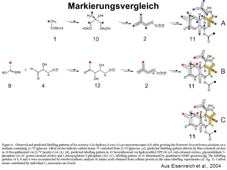 H. Scheer Aus Eisenreich et al., 2004 Markierungsvergleich
