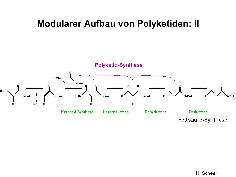 H. Scheer Modularer Aufbau von Polyketiden: II