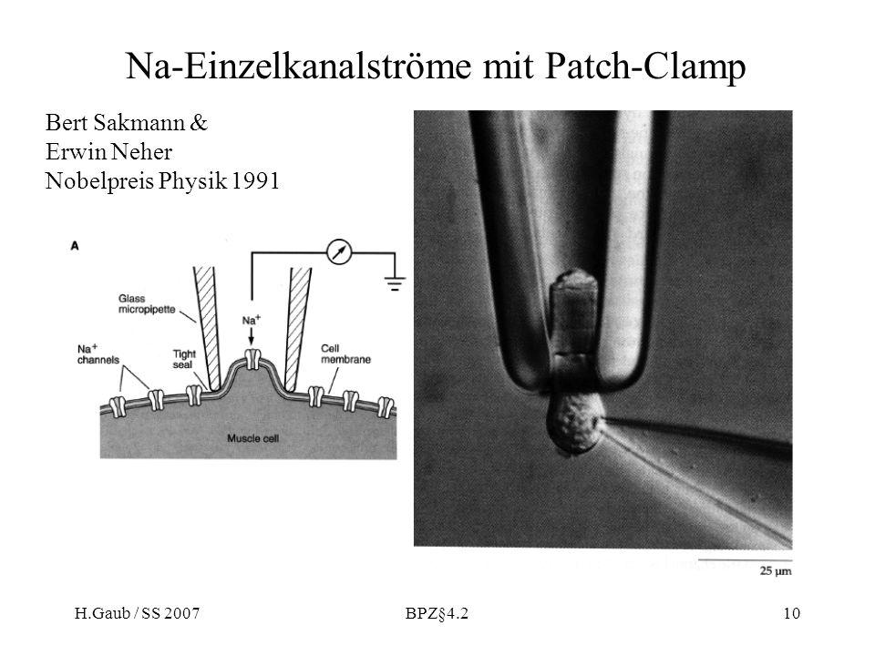 H.Gaub / SS 2007BPZ§4.210 Na-Einzelkanalströme mit Patch-Clamp Bert Sakmann & Erwin Neher Nobelpreis Physik 1991