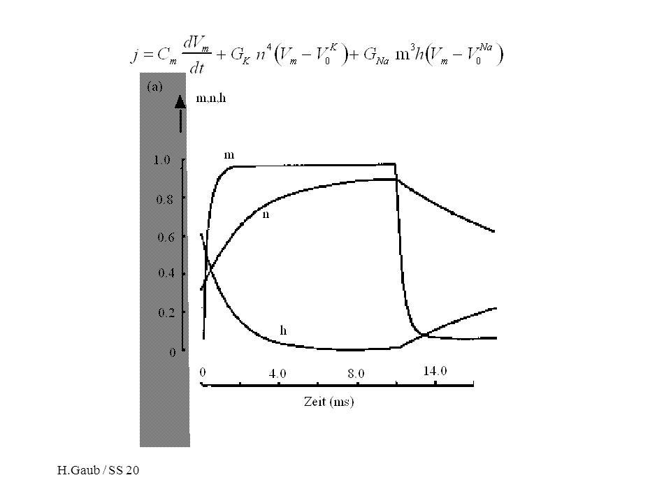 H.Gaub / SS 2007BPZ§4.215