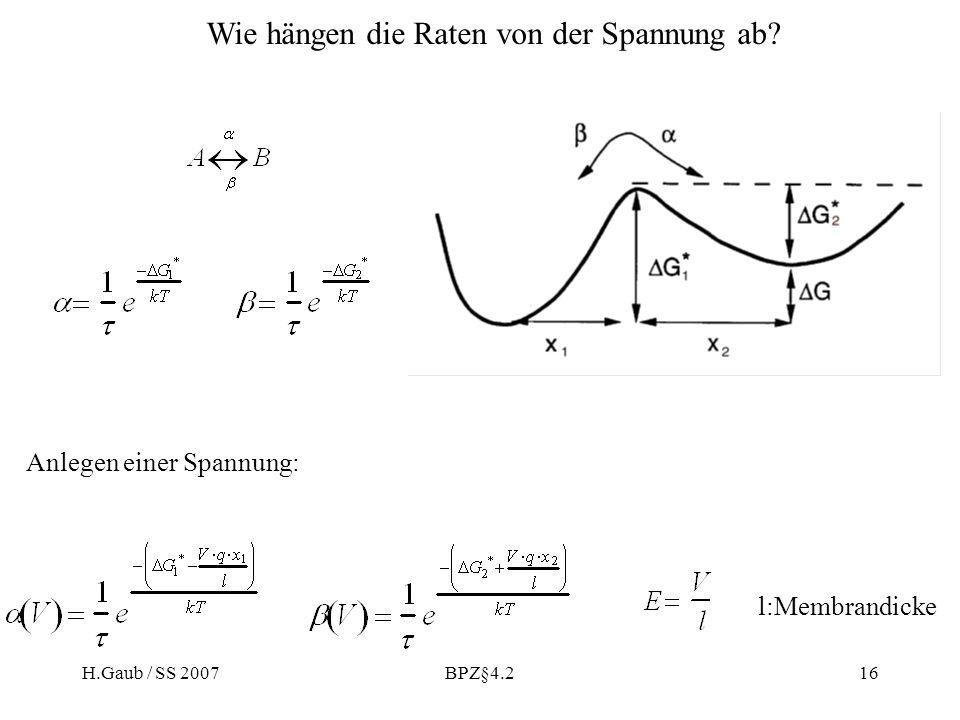 H.Gaub / SS 2007BPZ§4.216 l:Membrandicke Wie hängen die Raten von der Spannung ab.