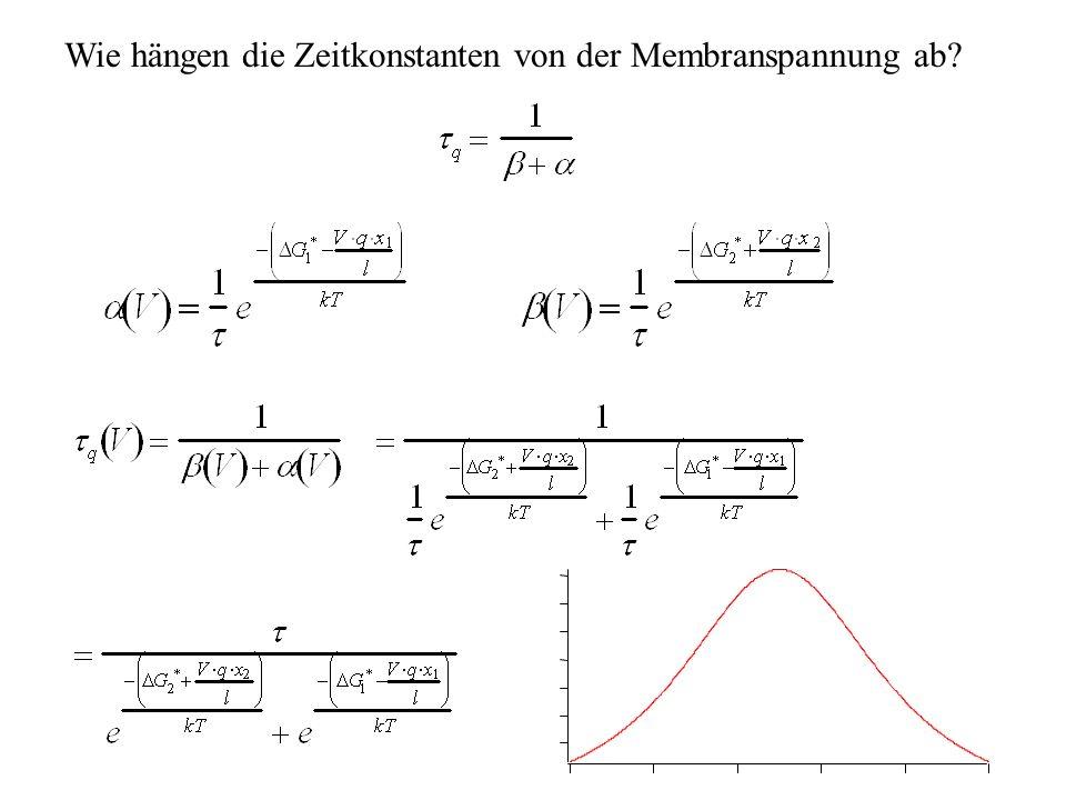 H.Gaub / SS 2007BPZ§4.219 Wie hängen die Zeitkonstanten von der Membranspannung ab?